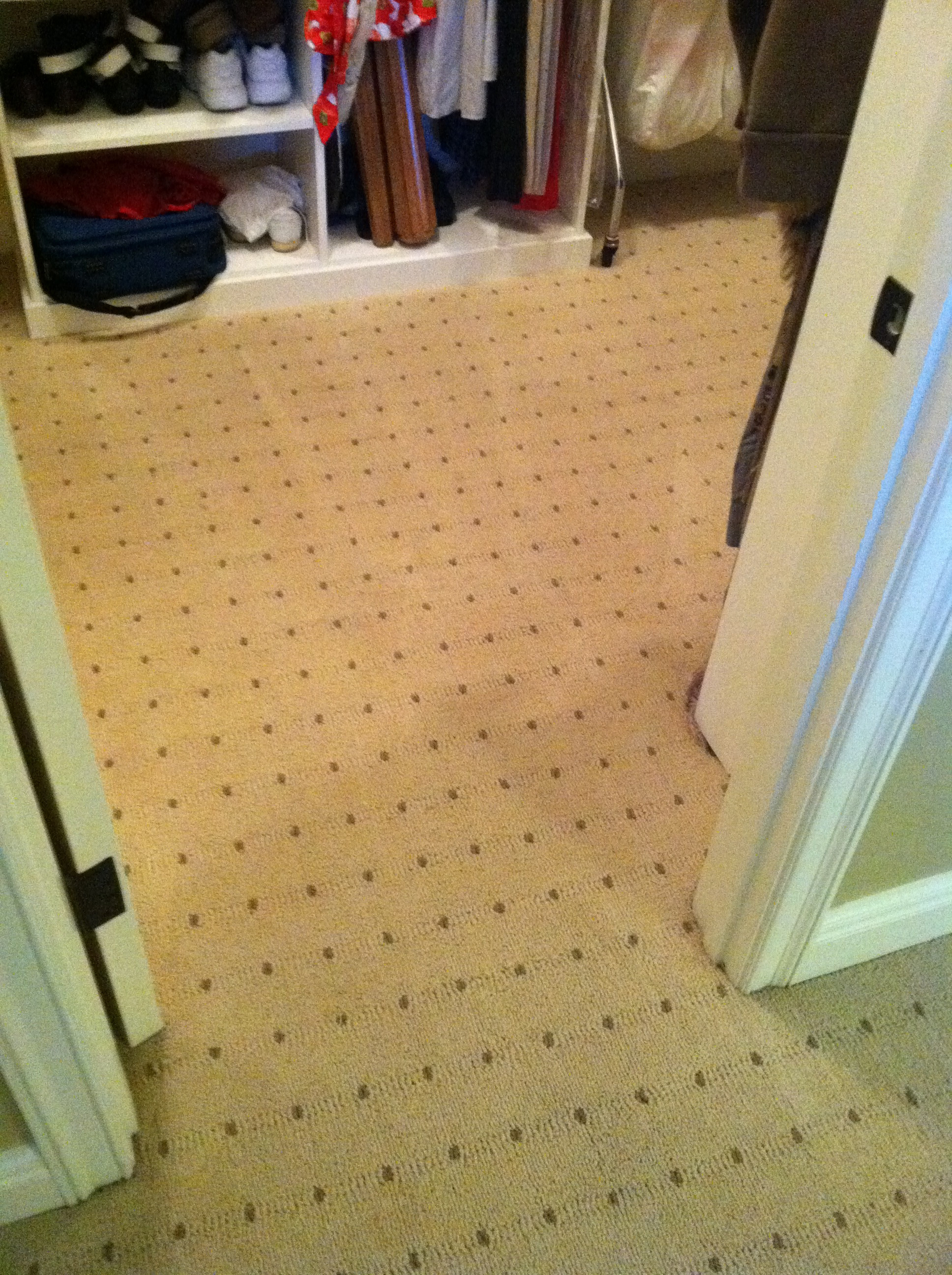 Before Amp After Cleaning Pics Of The Week Carpet