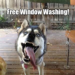 Free Window Washing